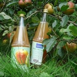 Bio Ittre – La pomme à croquer ou à boire