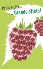 Di 24/11 – Petits fruits … grands effets