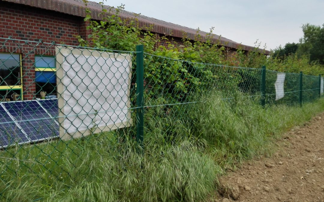 Pesticides près des écoles : mieux vaut prévenir que guérir